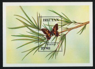 Bhutan 840 Butterfly photo