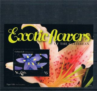 St Kitts 2011 Exotic Flowers 1v Ms photo