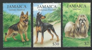Jamaica 1999 Sc 908 - 910 Dogs photo
