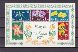 Barbados 352a Flowers Of Barbados 1970vf S/s Bh photo