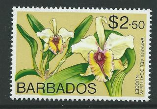 Barbados Sg522 1975 $2.  50 Orchid Wmk Digonal photo