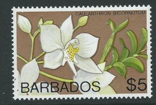 Barbados Sg523 1975 $5 Orchid Wmk Digonal photo