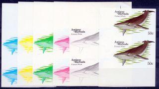 1983 Antigua Barbuda Whales 50¢ Finback Whale Imperf Progressive Proofs (6) photo
