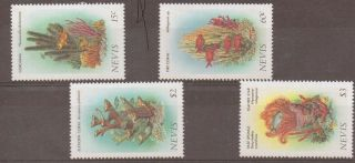 Nevis Sg423/6 1986 Corals photo