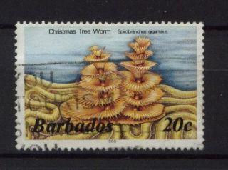 Barbados 1985 - 8 Sg 798b 20c Marine Life