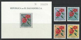 Salvador 1960 Sc C188 - 192 Christmas Poinsettias photo
