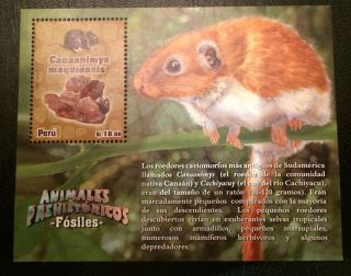 Peru Fossil Prehistoric Animal Souvenir Sheet Dinosaur photo