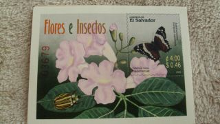 El Salvador Flores E Insectos Sheet With One Stamp,  Vhtf photo