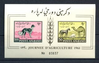 Afghanistan 1961 Agriculture Imperf M/s A32465 photo