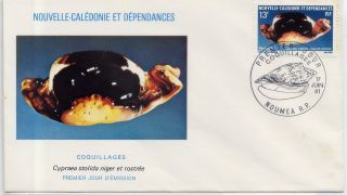 Cypraea Stolida Niger Rostrate Stamp France Caledonia Envelope Cancel Cover photo