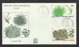 Taaf French Antarctic 1987 Plants 2v Fdc photo