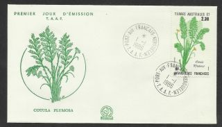 Taaf French Antarctic 1986 Cotula Plumosa Plant 1v Fdc photo