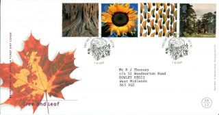 1 August 2000 Tree And Leaf Royal Mail First Day Cover St Austell Shs photo