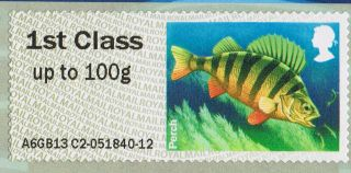 The Perch (freshwater Fish) Illustrated On 2013 Self - Adhesive Gb Stamp photo
