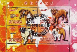 2013 Republic Of Congo Postage Mini - Sheet Of 4 Dogs Canines Bulldog Terrier Cto photo