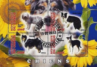 2013 Republic Of Congo Postage Mini - Sheet Of 4 Dogs Canines Shetland Collie Cto photo