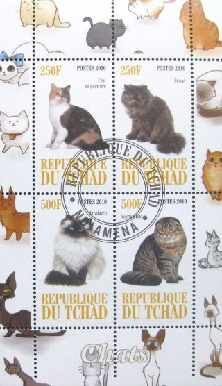 2010 Chad Postage Mini - Sheet Cats Domestic Animals Feline Persian Himalayan Cto photo