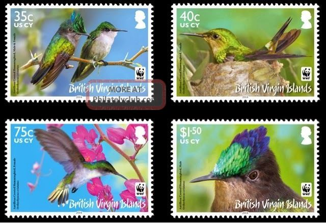 Br.  Virgin Islands Wwf Antilles Crested Hummingbird British Colonies & Territories photo