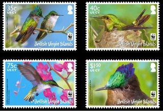Br.  Virgin Islands Wwf Antilles Crested Hummingbird photo