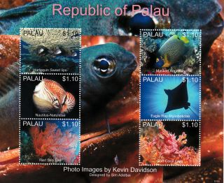 Palau 2013 Marine Life I 6v M/s Fish Angelfish Ray Coral Crab Red Sea Fan photo