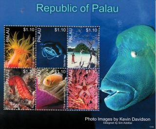 Palau 2013 Marine Life Ii 6v M/s Fish Manta Ray Sea Horse Anemone Coral Fan photo