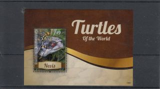 Nevis 2013 Turtles Of The World 1v S/s Reptiles Gulf Coast Box Turtle photo