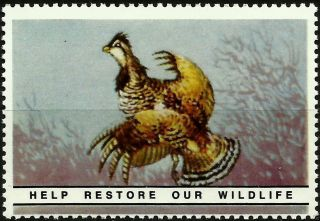 Ruffed Grouse,  National Wildlife Federation,  Year 1938,  Reprinted In 1987, .  - photo