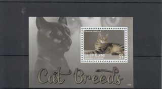 Union Island Grenadines St Vincent 2013 Cat Breeds I 1v S/s Pets Shorthair photo