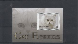 Union Island Grenadines St Vincent 2013 Cat Breeds Ii 1v S/s Pets photo