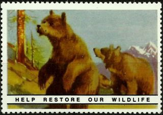 Grizzly Bear,  National Wildlife Federation,  Year 1938,  Reprinted In 1987, .  - photo