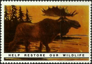Moose,  National Wildlife Federation,  Year 1938,  Reprinted In 1987, .  - photo