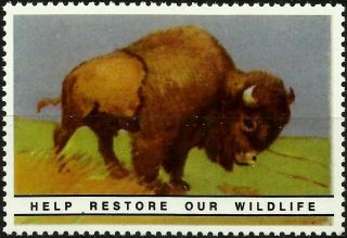 Bison,  National Wildlife Federation,  Year 1938,  Reprinted In 1987, .  - photo