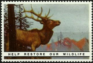 Elk,  National Wildlife Federation,  Year 1938 Reprinted In 1987, photo