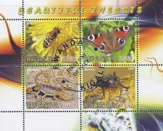 2009 Rwanda Postage First Day Issue Mini - Sheet Of 4 Insects Cto photo