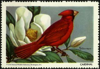 National Wildlife Federation Stamp,  Year 1956,  Cardinal, photo