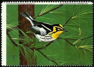 National Wildlife Federation Stamp,  Year 1970,  Blackburnian Warbler, photo