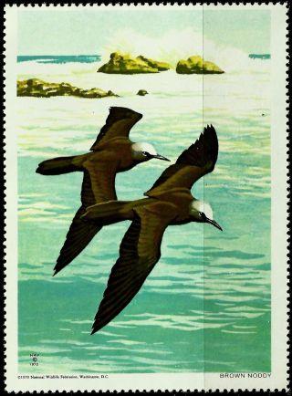 National Wildlife Federation Stamp,  Year 1970,  Brown Noddy, photo