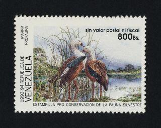 Venezuela Conservation Bird Stamp photo