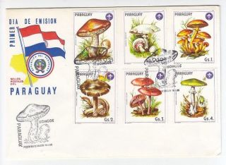 Paraguay,  Flora,  Mushrooms,  Fdc 1985 photo