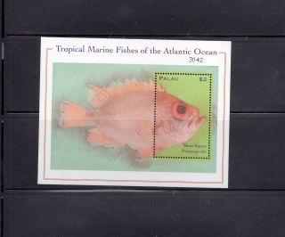 Palau 2000 Atlantic Ocean Fish Scott 590 Souvenir Sheet photo