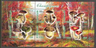 2012 Mushrooms I Sheet Of 6 Cinderella (c1) - photo
