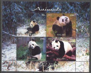 2012 Animals Panda Sheet Of 4 Mdc2209 photo