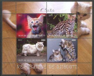 2012 Domestic Cats Sheet Of 4 Mdc2145 photo