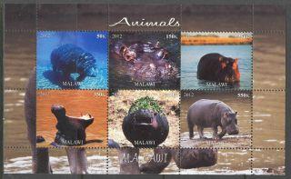 2012 Animals Hippopotamus Sheet Of 6 Mdc2210 photo