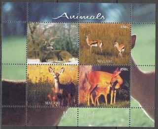 2012 Animals Deers Antelopes Sheet Of 4 Mdc2203 photo