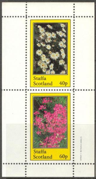 Staffa (br.  Local) 1982 Flowers I Camomile Sheet Of 2 Ns202 photo