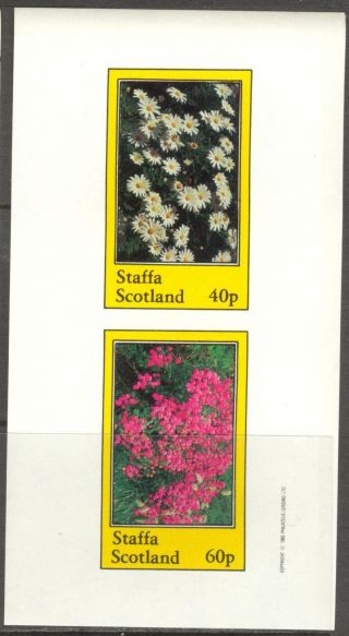 Staffa (br.  Local) 1982 Flowers I Camomile Sheet Of 2 Imperf.  Ns203 photo