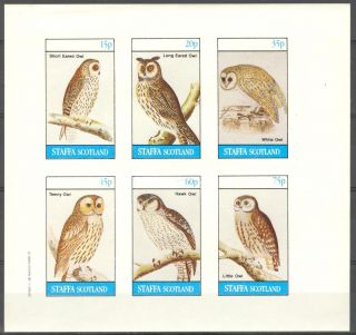 Staffa (br.  Local) 1982 Birds Owls Sheet Of 6 Imperf.  Ns215 photo