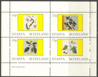Staffa (br.  Local) 1982 Flowers Ii Sheet Of 4 Ns224 photo