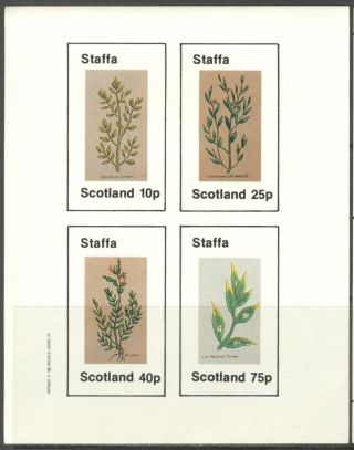 Staffa (br.  Local) 1982 Flowers Iv Sheet Of 4 Imperf.  Ns226 photo